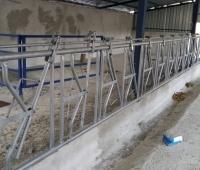 hayvan barınakları yapımı - Susurluk (11)