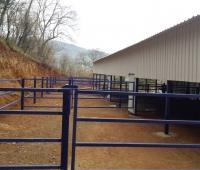 hayvan barınakları yapımı - Susurluk (12)