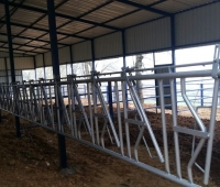 hayvan barınakları yapımı - Susurluk (13)