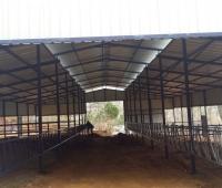hayvan barınakları yapımı - Susurluk (14)