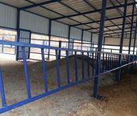hayvan barınakları yapımı - Susurluk (15)
