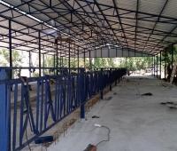 hayvan barınakları yapımı - Susurluk (4)